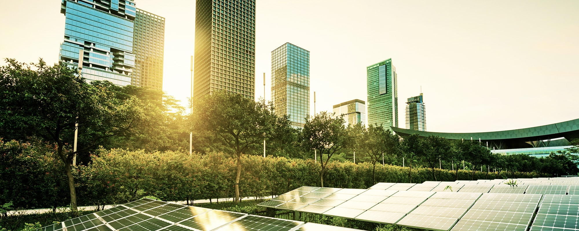 EarthBi sustainable economic model