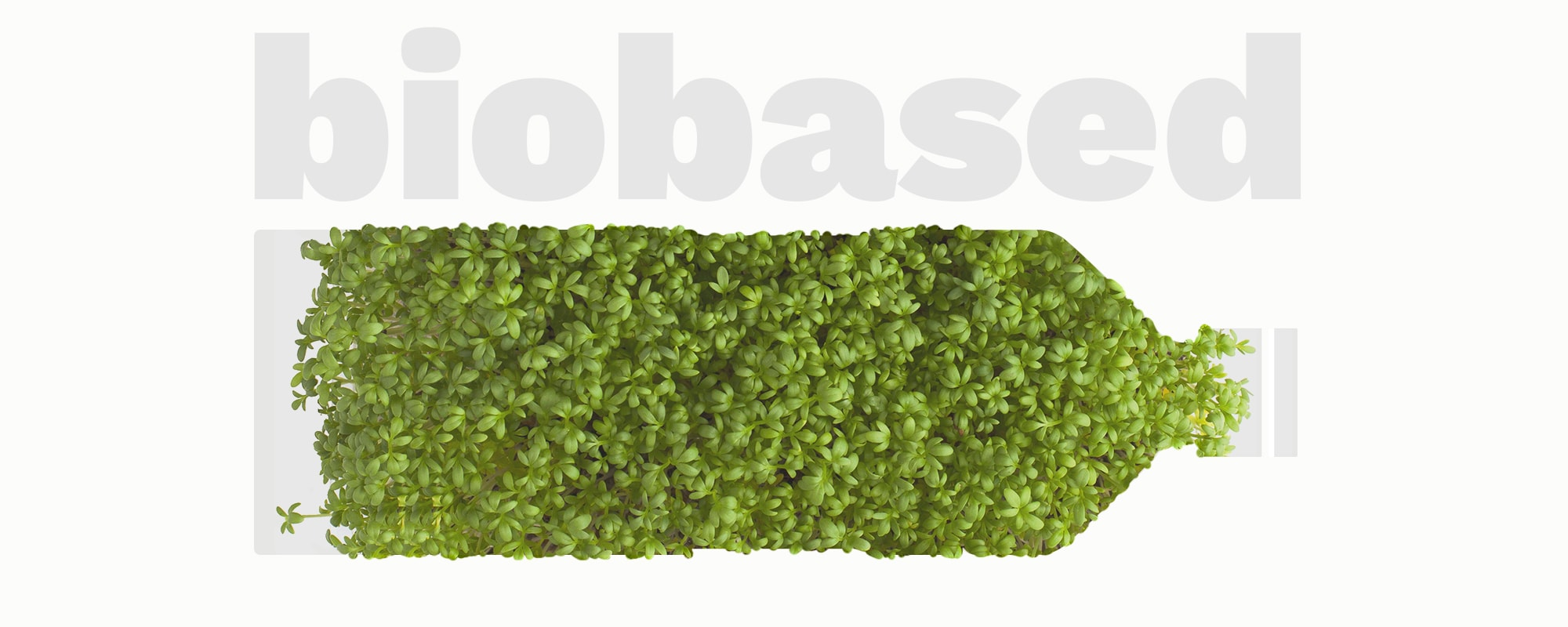 bioplastic biobased biodegradable