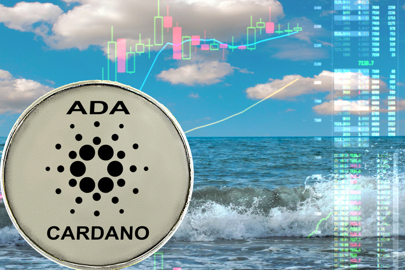 The Cardano update is here