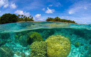 Marshall Islands SOV to replace the dollar