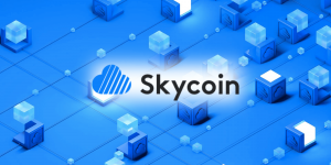Skycoin's Skywire testnet launched