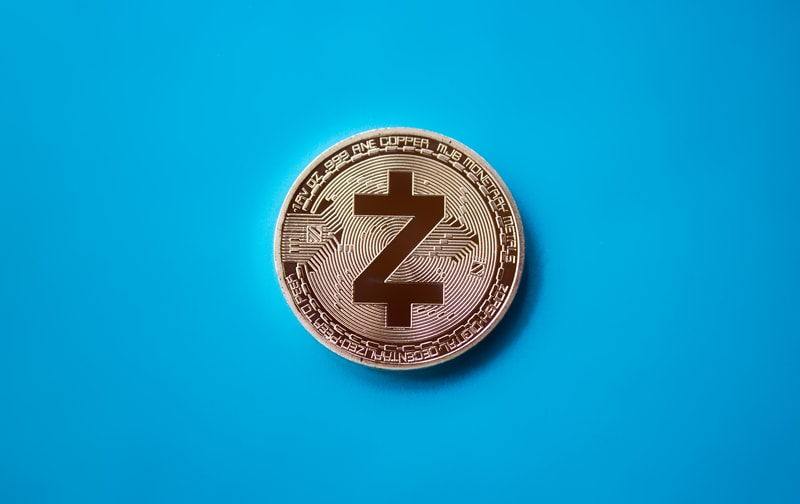 The hybrid model of the Zcash protocol