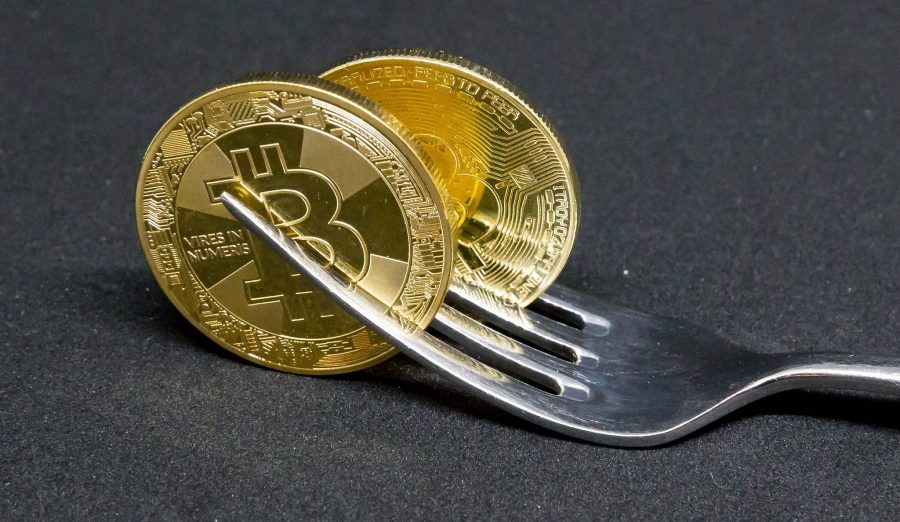 bitcoin cash fork what to do