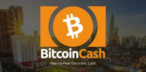Bitcoin vs Bitcoin Cash in the words of Roger Ver