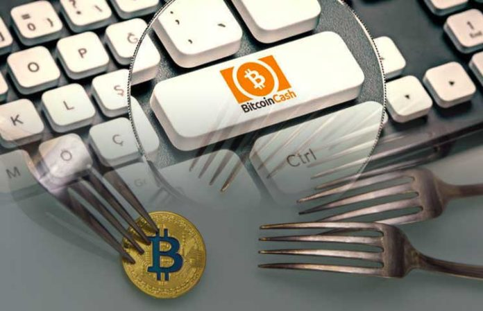 Bitcoin Cash: fork has been completed and 2 chains are born