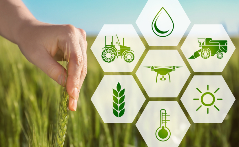 Agri-tech: benefits and use cases of blockchain in the world of agriculture