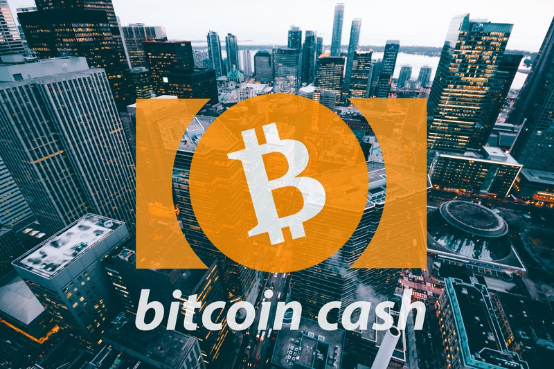 Fifth day of rising: the value of Bitcoin Cash soars