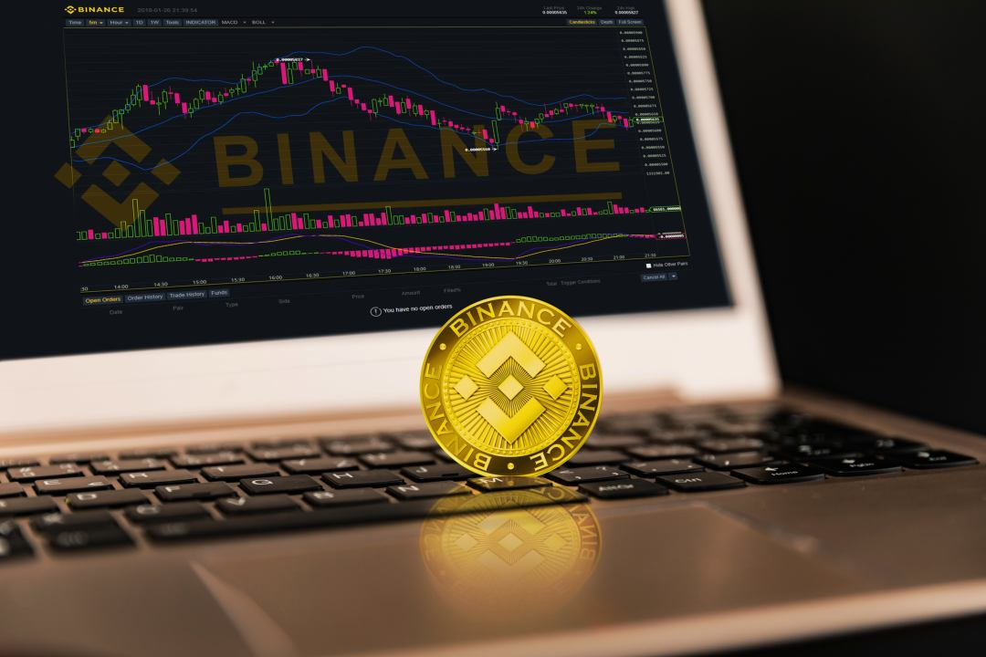 The Binance Coin price rises in a period of general uncertainty