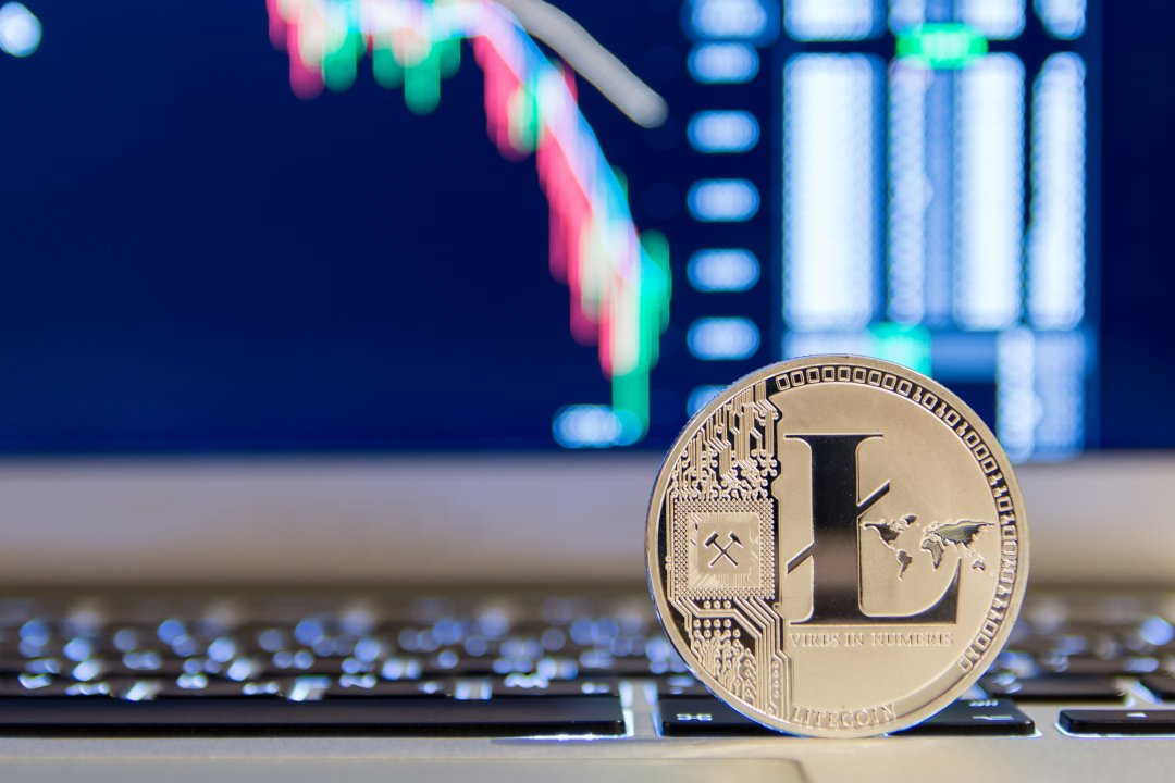 Litecoin price analysis: +4% on a daily basis