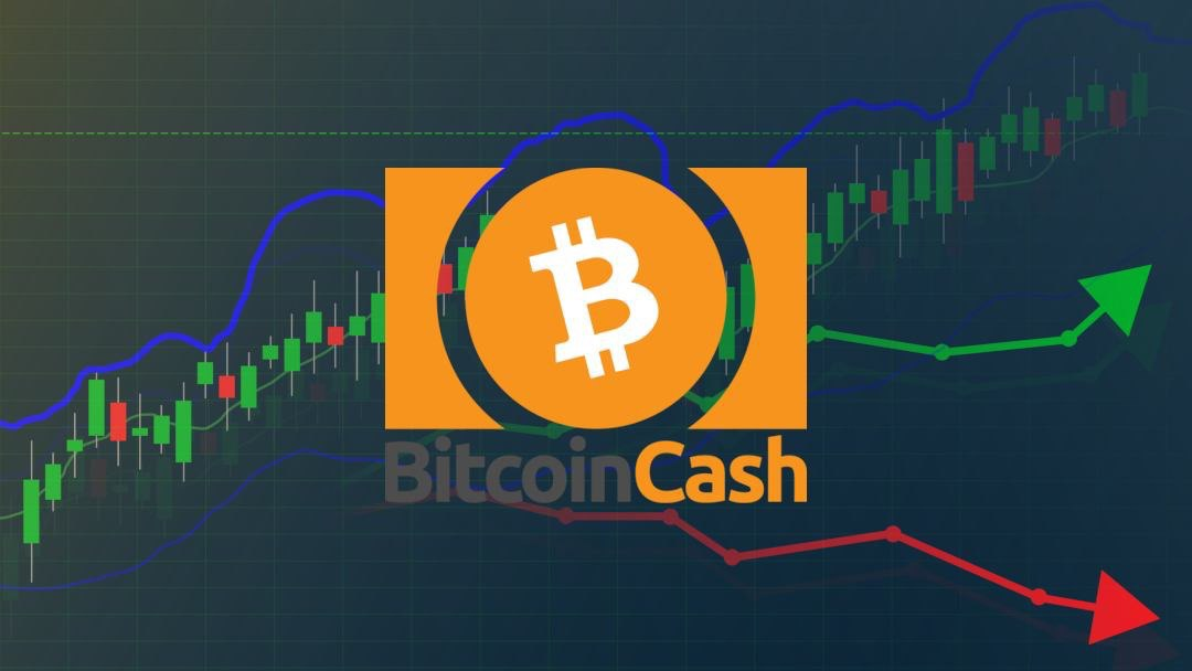 Bitcoin Cash news: today the price rises by 45%