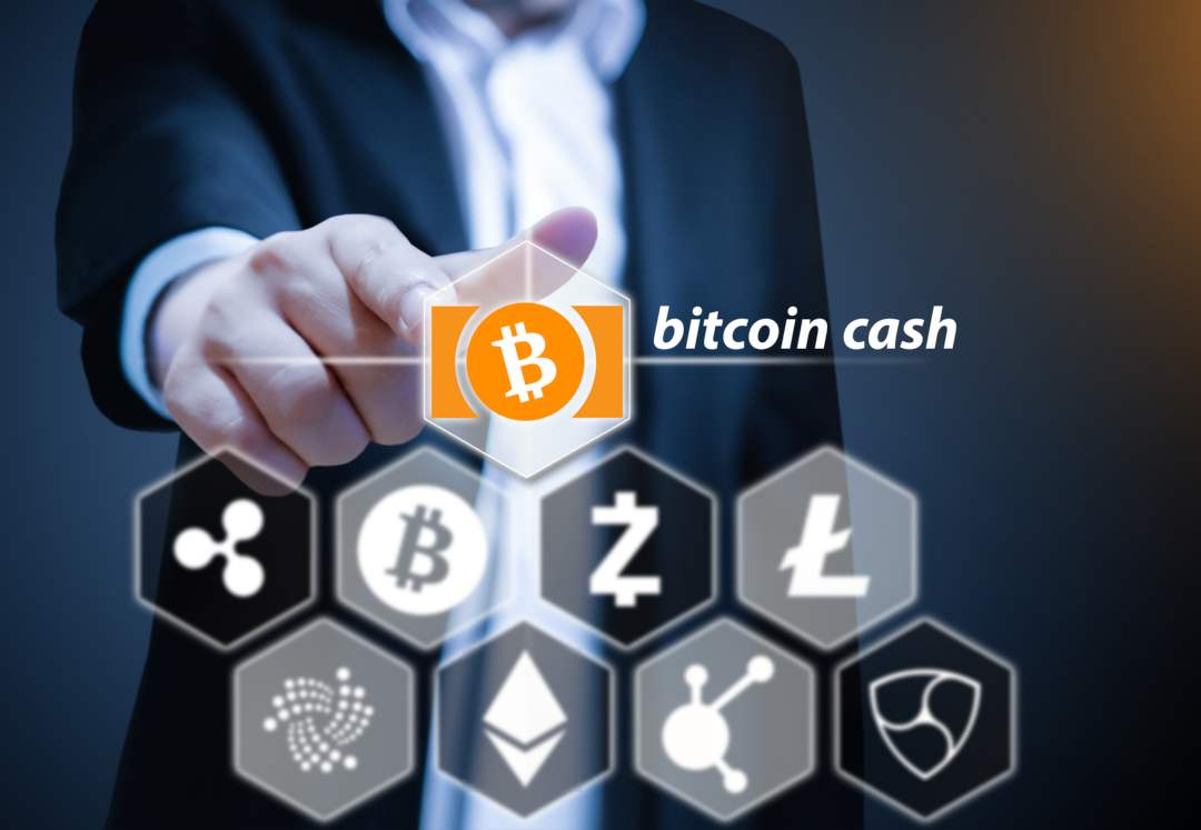 Bitcoin Cash: active addresses are less than those of Dogecoin