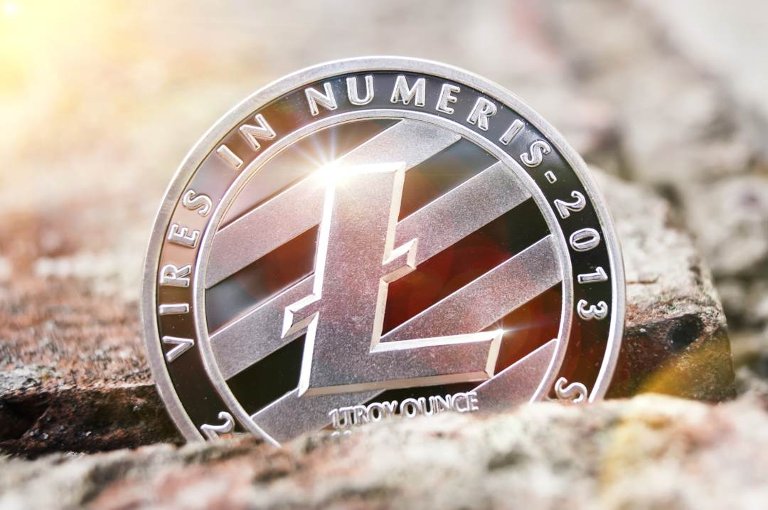 Tone Vays: halving Litecoin will lead to a decrease