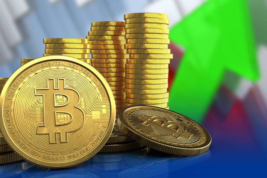 Bitcoin dominance rises