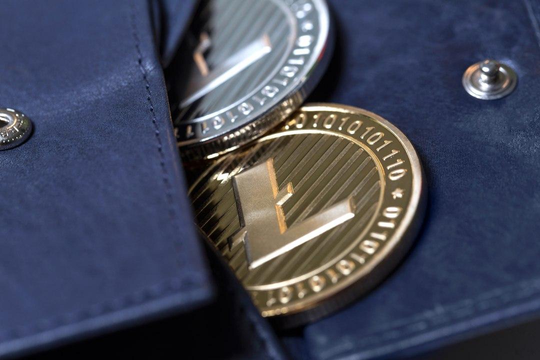 Here comes the Litecoin (LTC) debit card