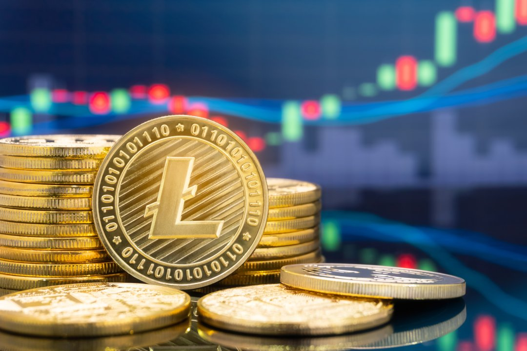 Litecoin analysis: LTC rises by 10%