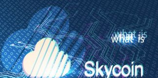 what is skycoin sky
