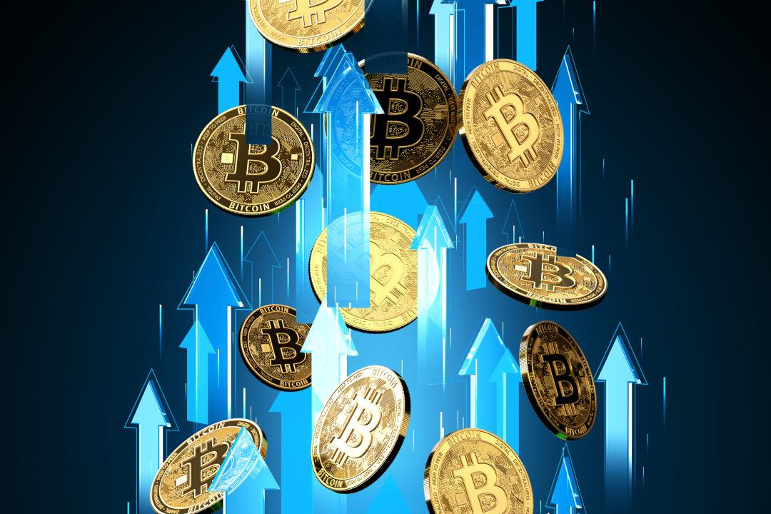 Why the price of bitcoin is rising