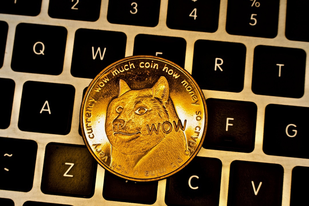 Dogecoin (DOGE): the satirical cryptocurrency has grown beyond expectations