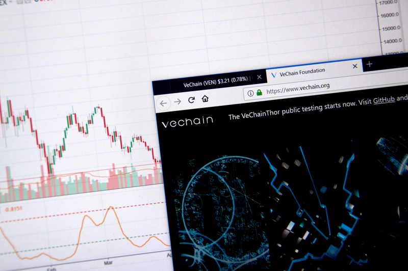VeChain: the price today rises by 60%