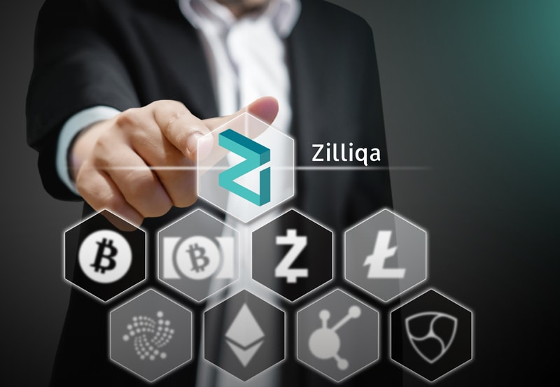 """Max Kantelia: """"Zilliqa can compete with VISA in 12 or 18 months"""""""
