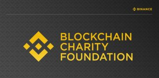 binance charity stablecoin