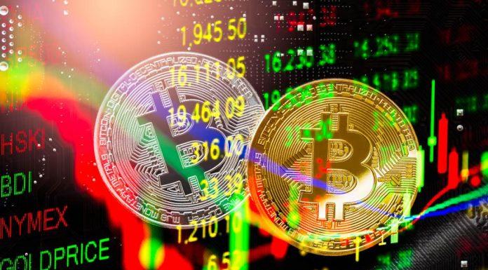 crypto market this week