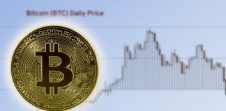 drop in the price of bitcoin