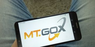 mt gox fortress group