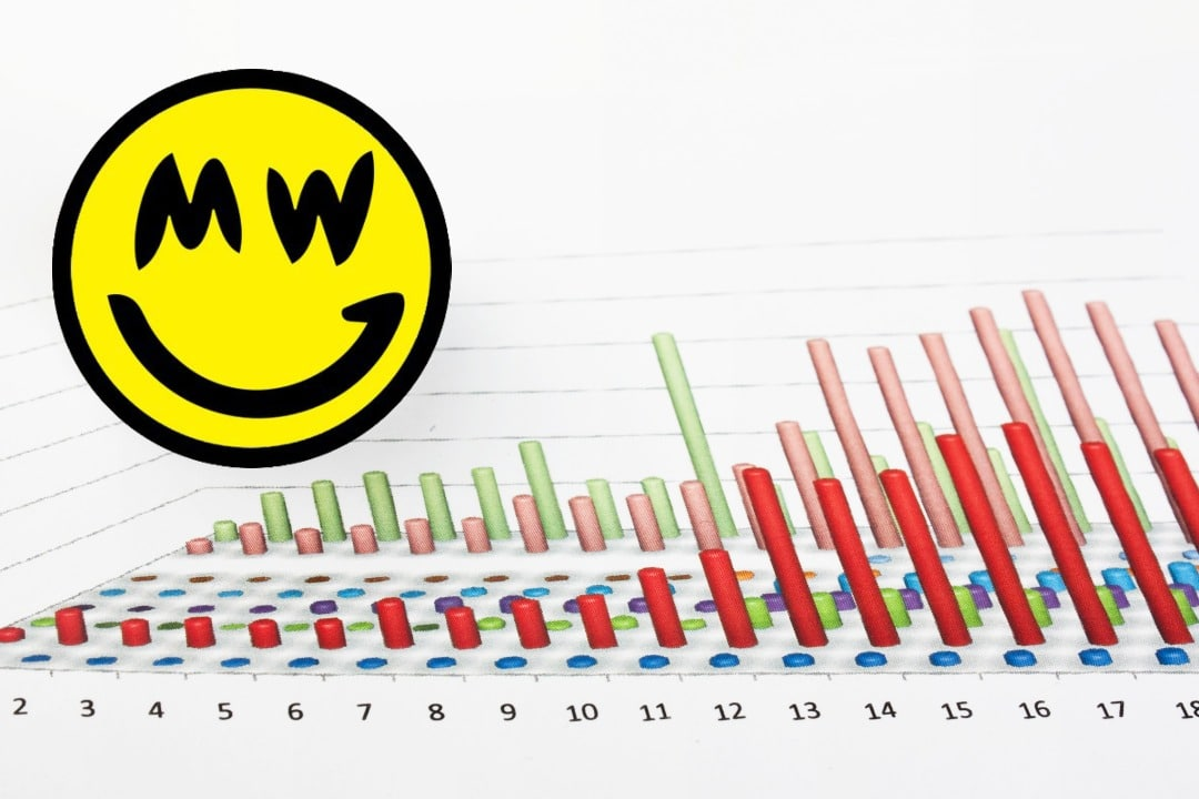 grin financial report