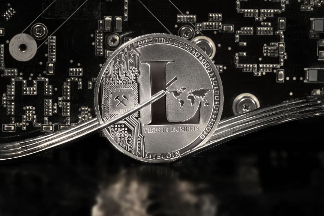 The Litecoin (LTC) Halving was a success: all the details