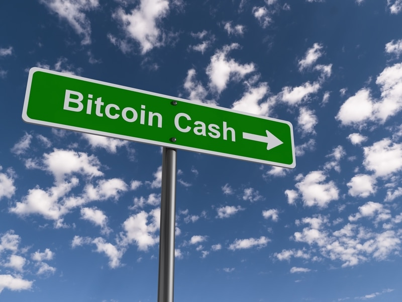 Bitcoin Cash: an offline wallet coming soon