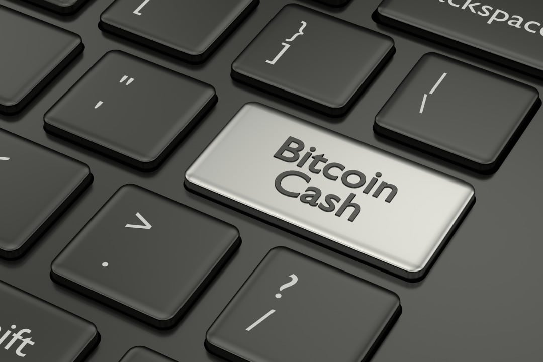 "Gabriel Cardona: ""BCH's future as payment rails"""