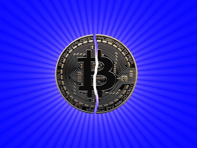 halving bitcoin price