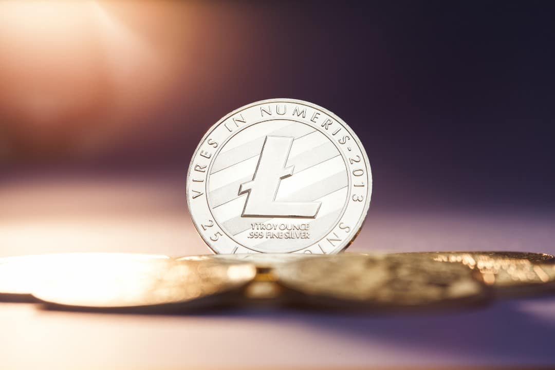 Records of transactions for Litecoin (LTC)
