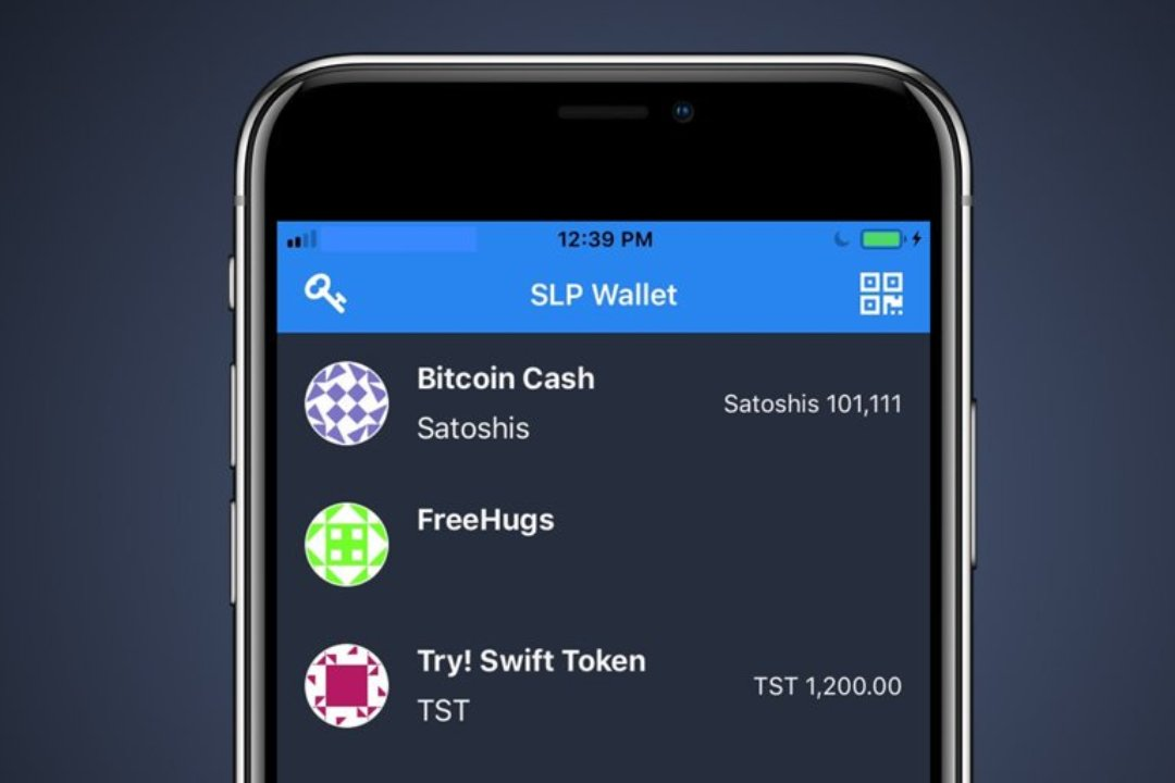 Electrum Cash: the wallet for Bitcoin Cash and SLP tokens