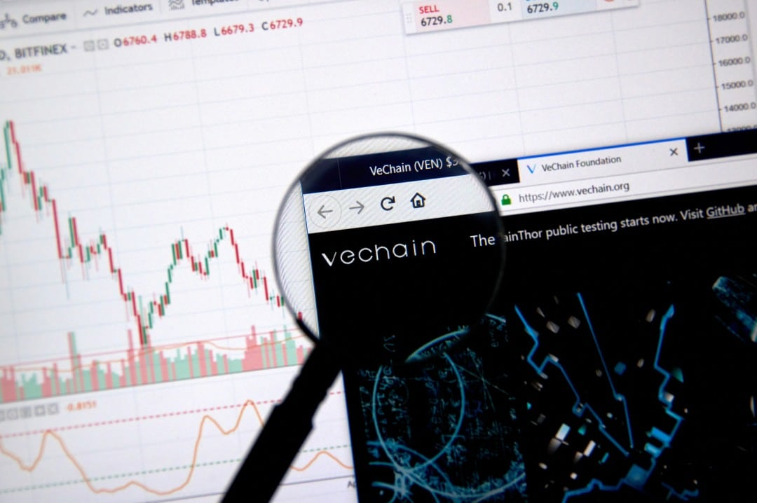 VeChain: the price rises thanks to the Chinese hype