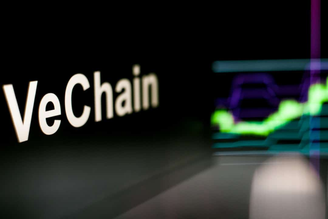 VeChain (VET), the price in full rally