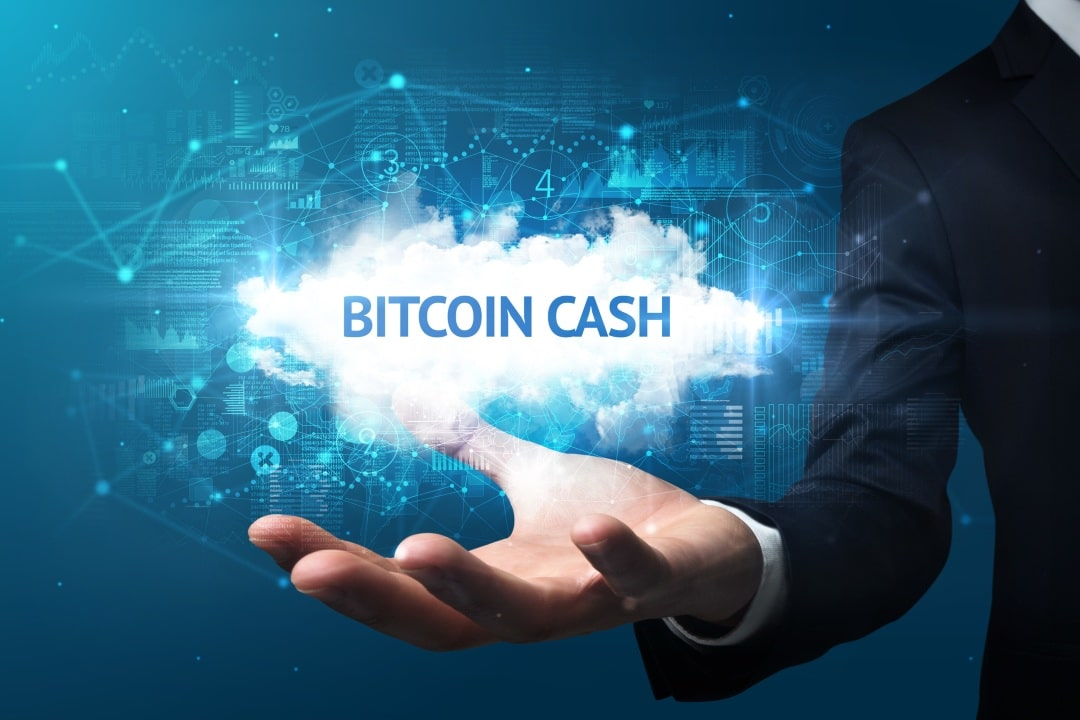 Bitcoin Cash: the Paywall service on BCH