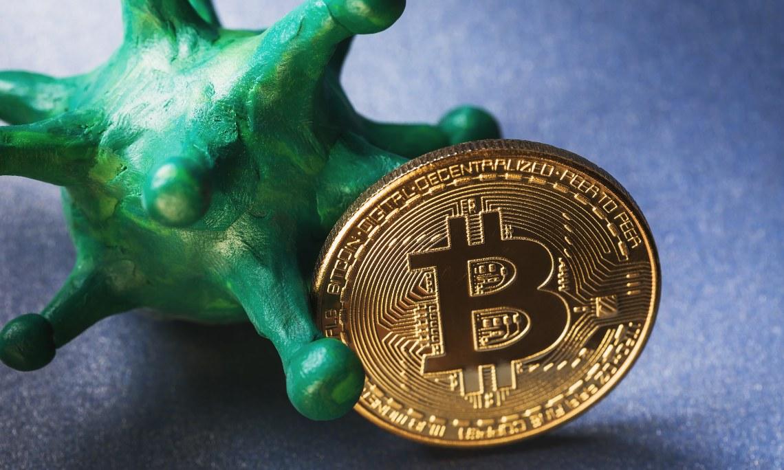 Novagratz bitcoin