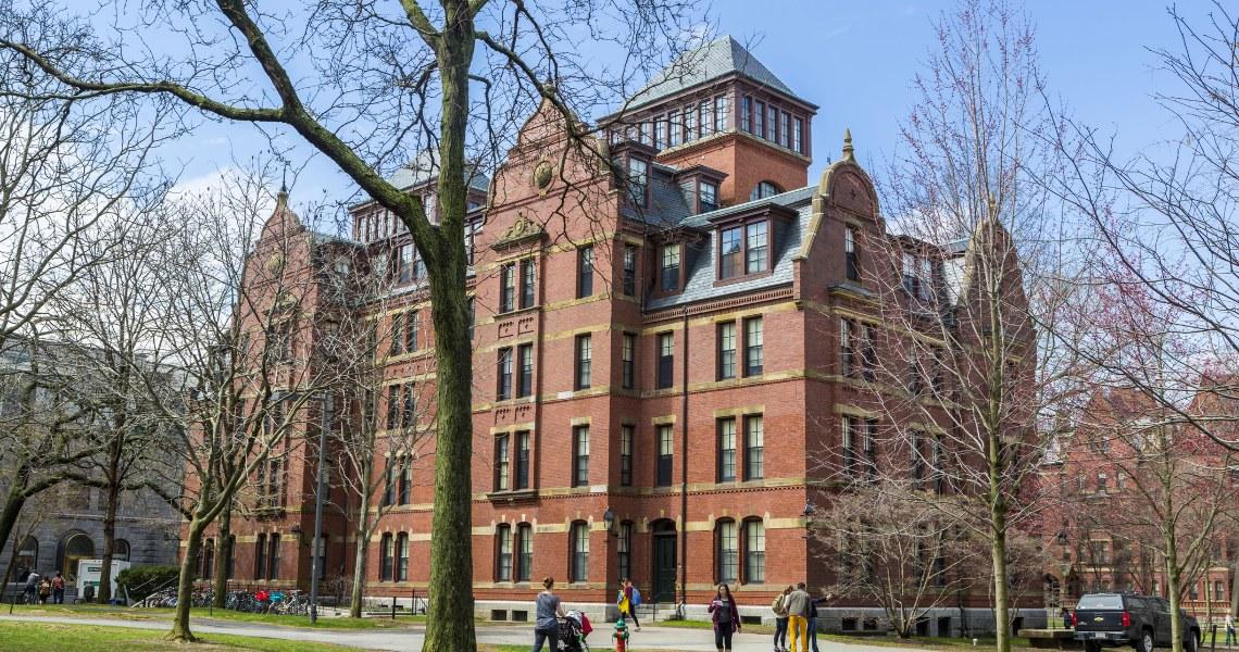 Harvard returns the money: Novogratz and Pompliano comment on the controversy
