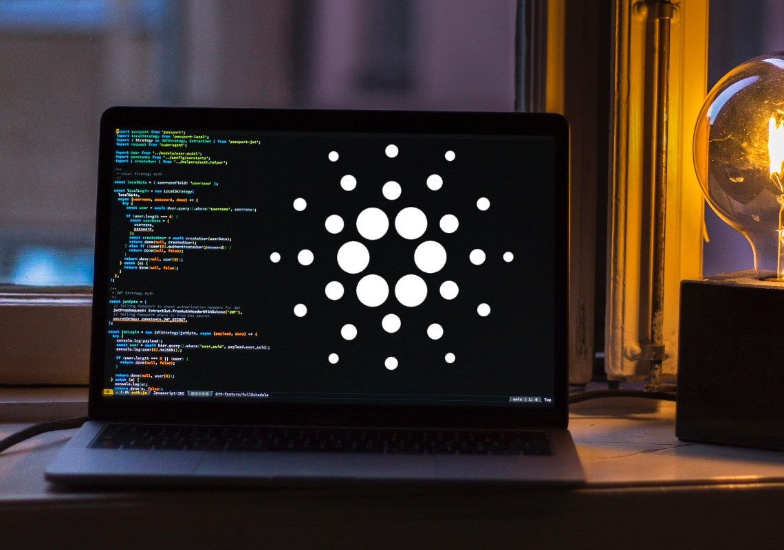 Crypto developer activity: Cardano in the lead