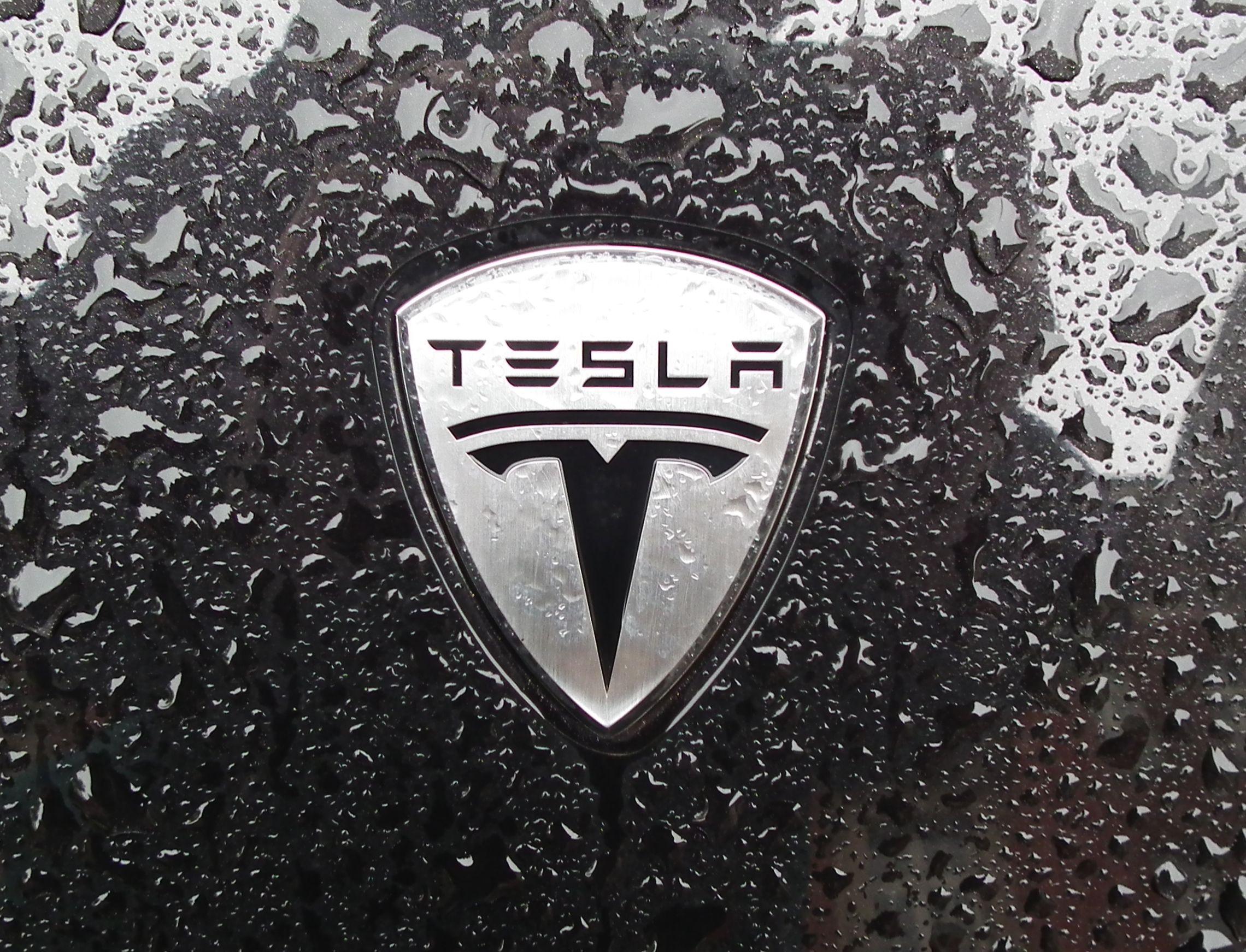 Tesla's shares go on Algorand