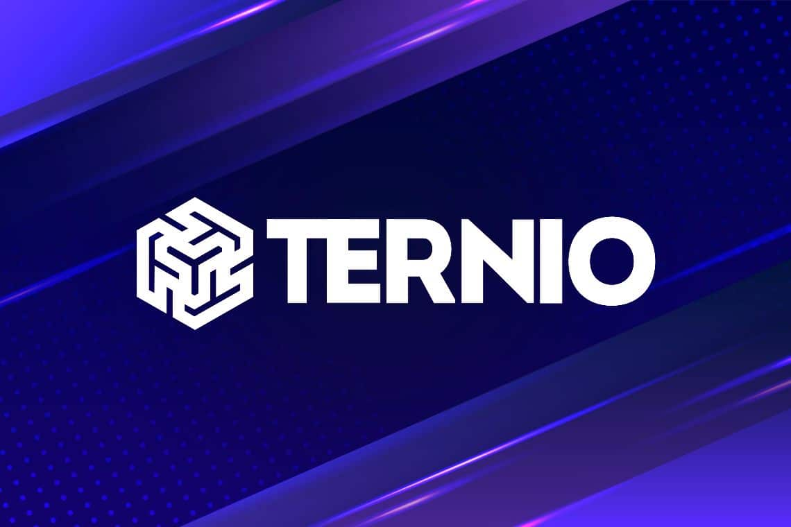 Ternio forms a partnership with Visa