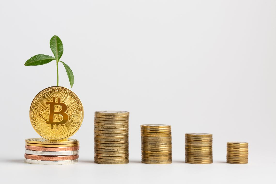 Why Bitcoin is growing: the fundamental reasons