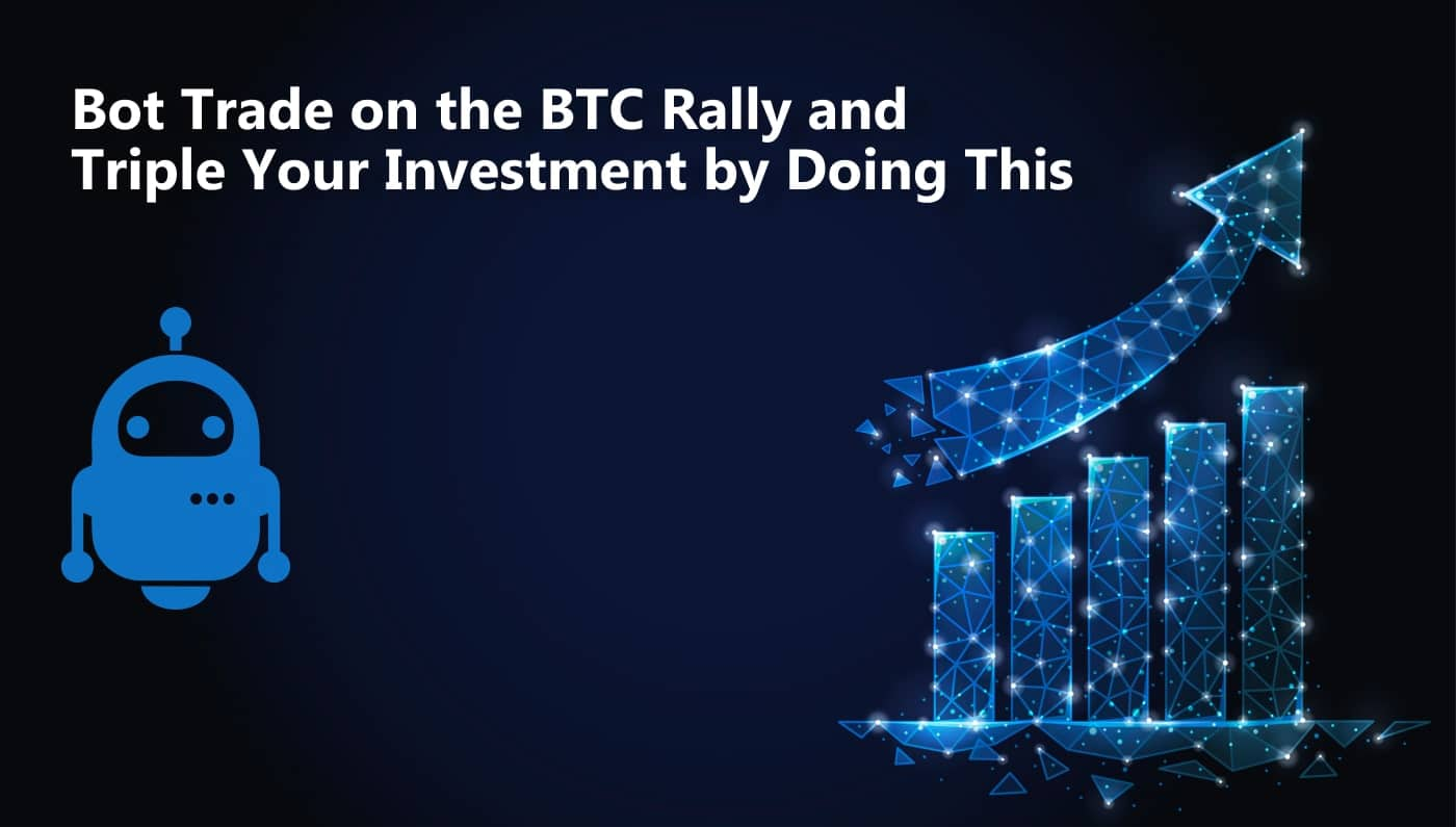 btc invest bot)