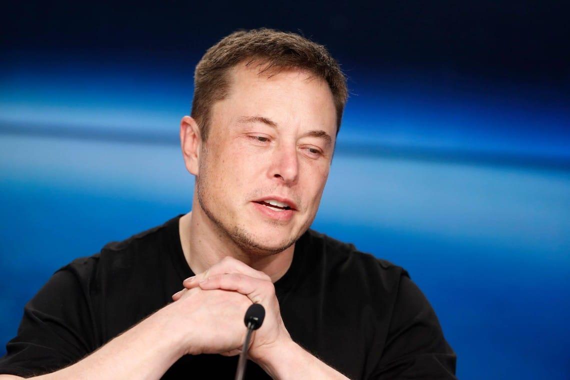 Elon Musk against Dogecoin whales