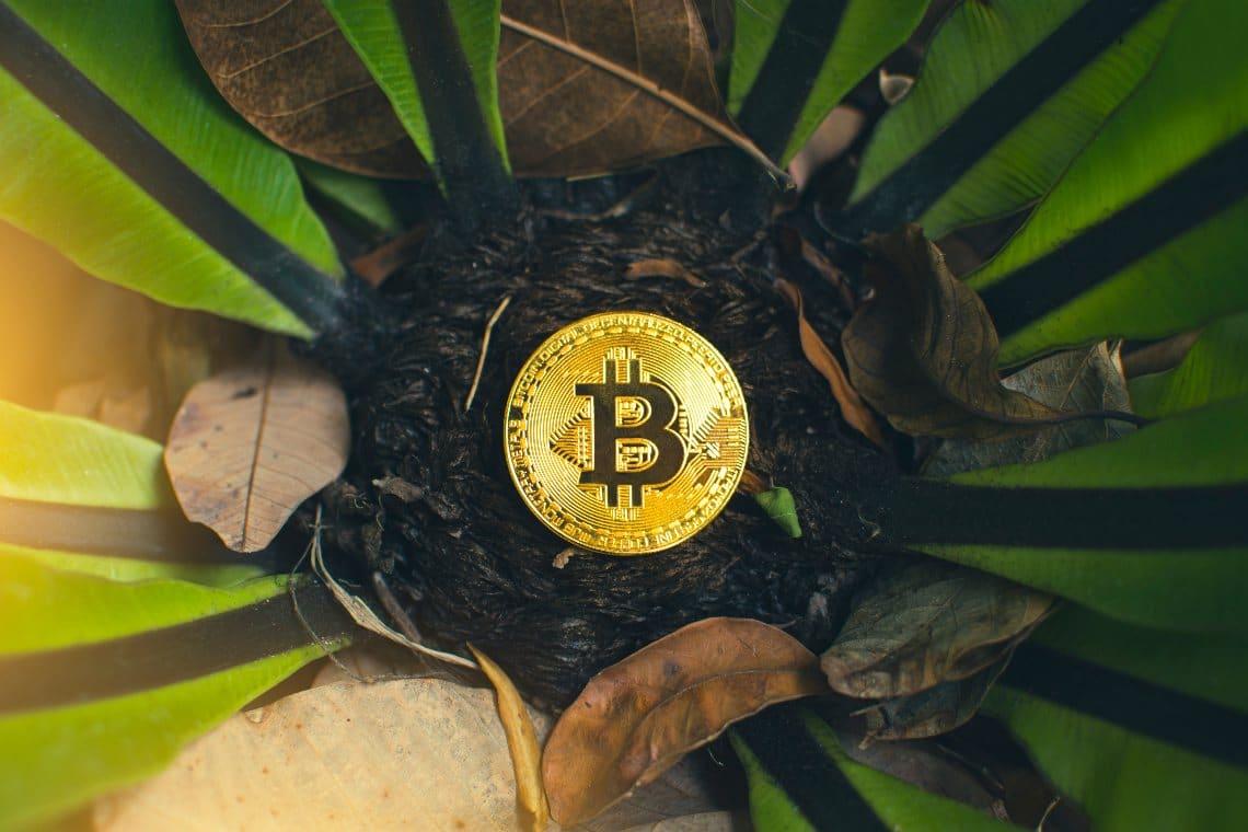 Come ottenere Bitcoin | Salvatore Aranzulla