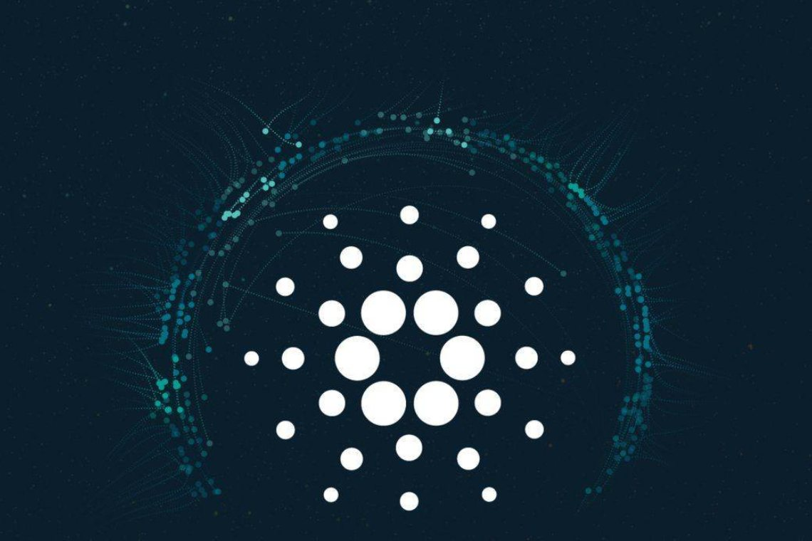 Retail investors choose Cardano: chasing the