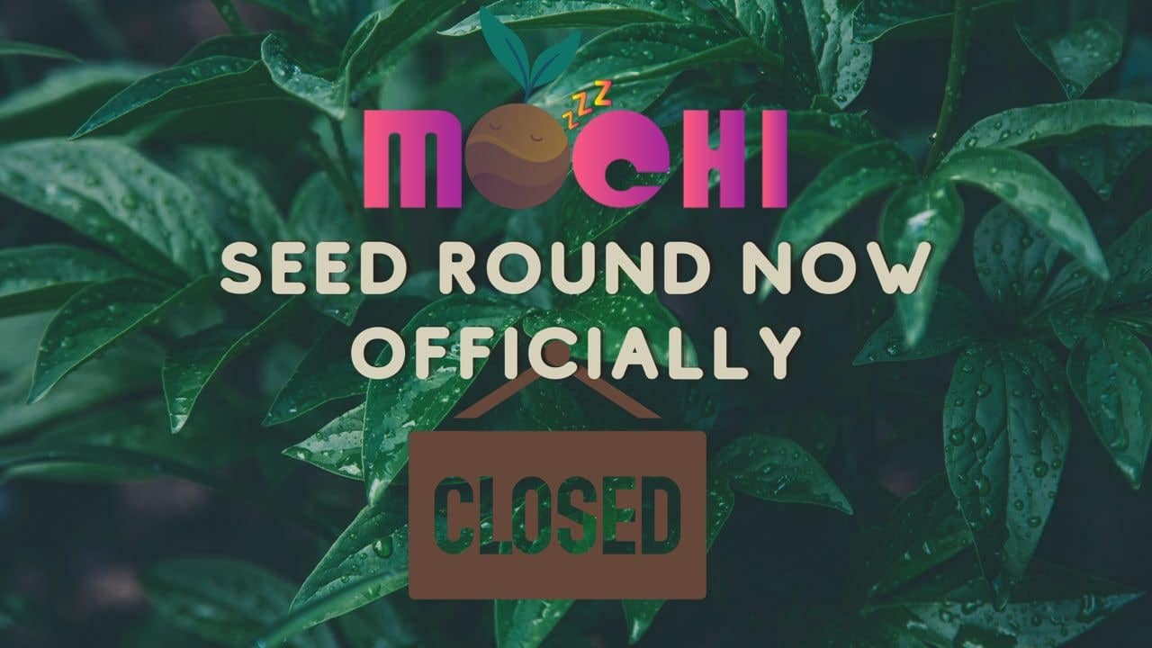 Mochi.Market preps for IDO for Its Multi-Chain NFT Decentralized Exchange