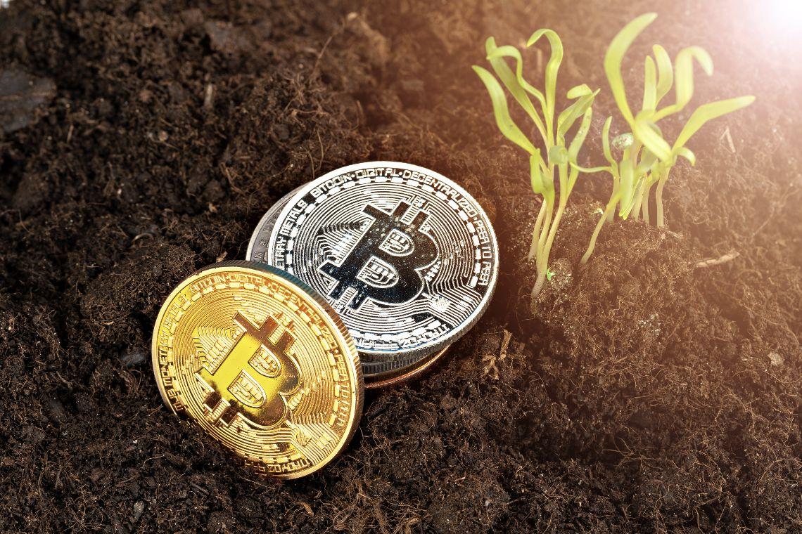 The Bitcoin Mining Council is born